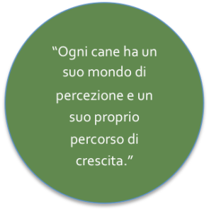 Citazione Learning Animals_Cane individuo